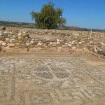 Olynthos Mosaike